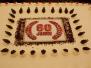60 Jahre SVM - Das Fest