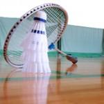 Federball und Federballschläger